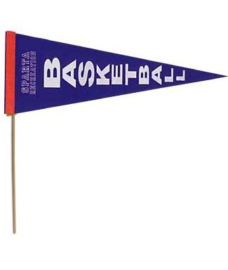 """Pennant 8"""" x 18"""" with 16"""" stick-0"""
